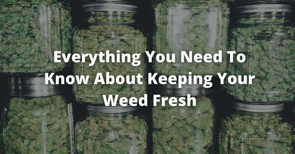 How long does weed stay good cover image with jars of weed in the background